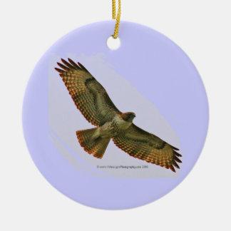 Hawk Duck holiday ornament