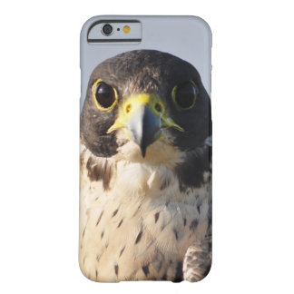 Hawk Face Barely There iPhone 6 Case