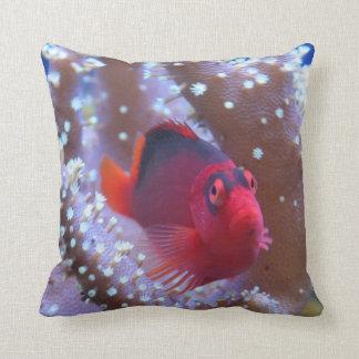 Hawk Fish Throw Pillow