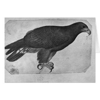 Hawk, from the The Vallardi Album Card