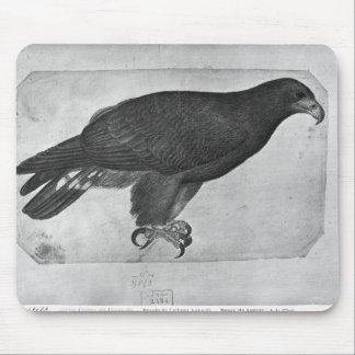 Hawk, from the The Vallardi Album Mouse Pad