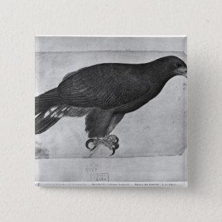 Hawk, from the The Vallardi Album Pinback Button
