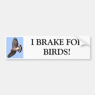Hawk, I BRAKE FORBIRDS! Car Bumper Sticker