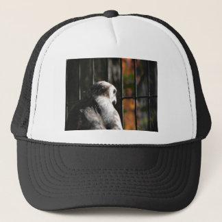 Hawk in a bird sanctuary trucker hat
