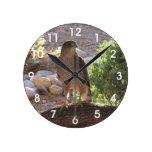Hawk in a Tree Clock