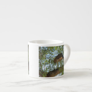 Hawk in a Tree Espresso Cup