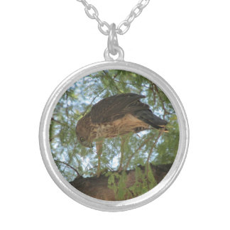 Hawk in a Tree Necklace