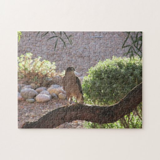 Hawk in a Tree Puzzle