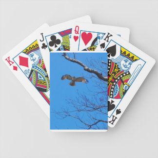 Hawk in flight bicycle playing cards