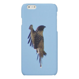 Hawk in Flight Iphone Case