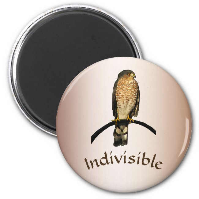 Hawk Indivisible Brown Magnet