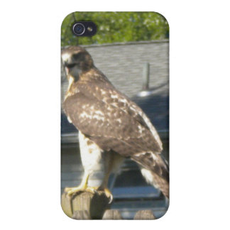 Hawk iPhone4 case