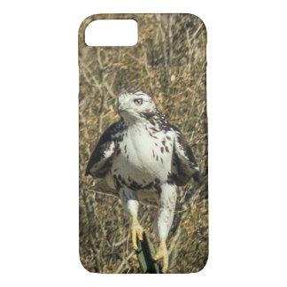 Hawk iPhone 8/7 Case