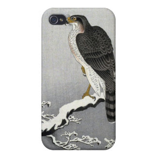 Hawk iPhone 4 Case