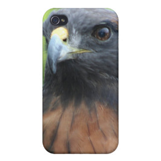 Hawk Covers For iPhone 4