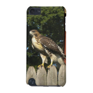 Hawk  iPod touch (5th generation) cases