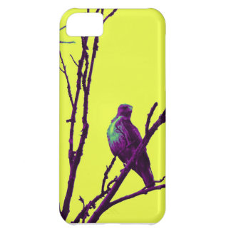 Hawk it out cover for iPhone 5C