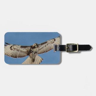 Hawk Travel Bag Tag