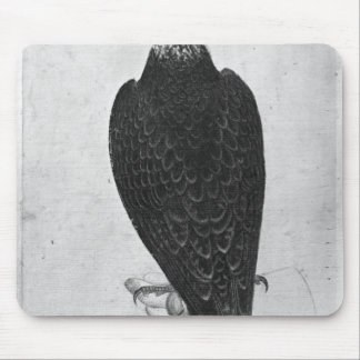Hawk on hand mouse pad