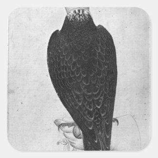 Hawk on hand square sticker