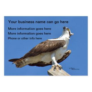 Hawk Osprey bird Business Cards
