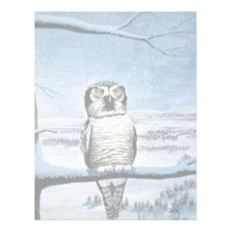 Hawk owl letterhead