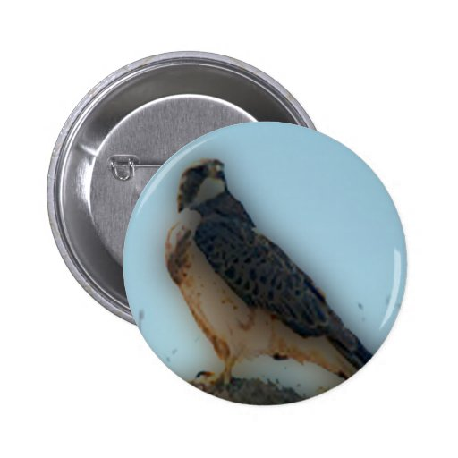 'Hawk Perched on a Post' 2 Inch Round Button