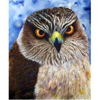 Hawk Photo Sculpture