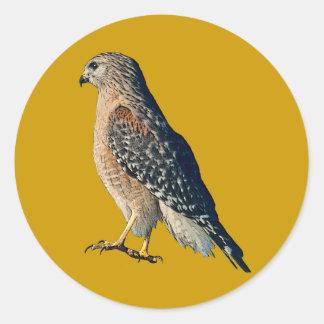 Hawk Picture Classic Round Sticker