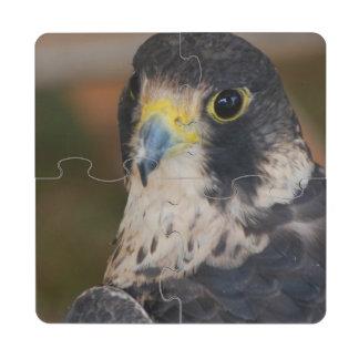 Hawk Puzzle Coaster
