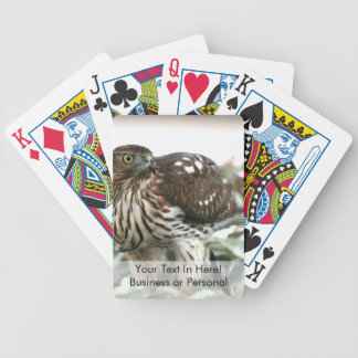hawk side view bird of prey animal photo bicycle playing cards