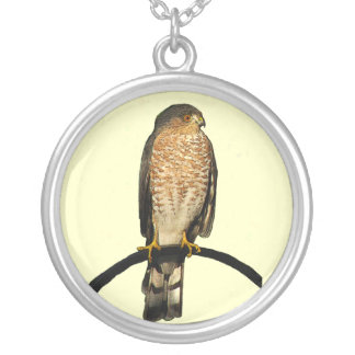 Hawk Silver Plated Necklace