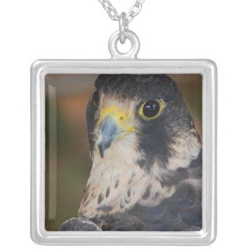 Hawk Square Pendant Necklace