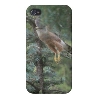 Hawk Take Off Cover For iPhone 4