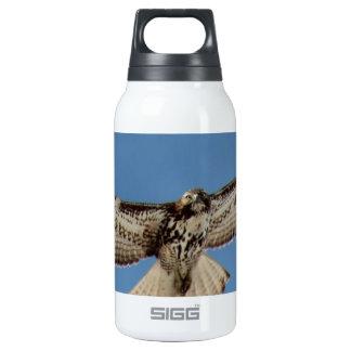 Hawk Thermos Water Bottle