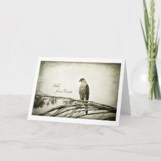 Hawk, vintage style, blank notecard