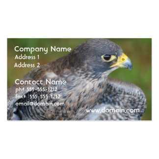 Hawk Wings Double-Sided Standard Business Cards (Pack Of 100)