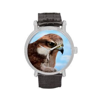 Hawk Wristwatches