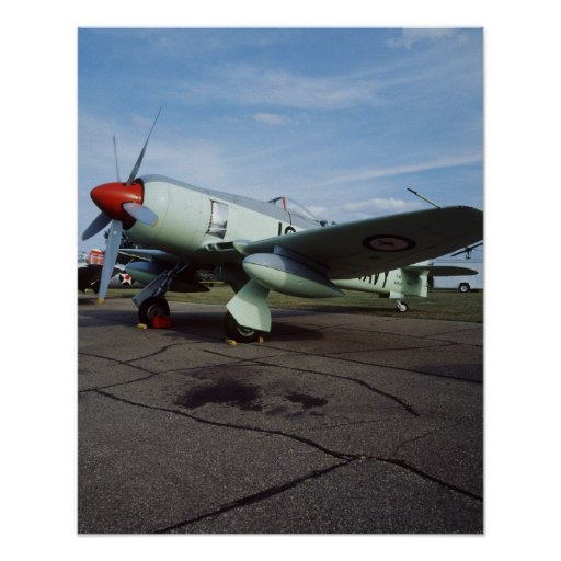 Hawker Sea Fury at CAF, Minnesota Wing, at the 2 Poster