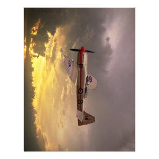 Hawker Sea Fury Flyer
