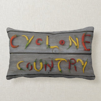 Hawkeye Cyclone House Divided Gifts Pillows