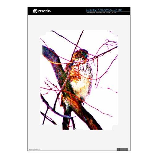 Hawkeye Pegatinas Skins Para iPad 3