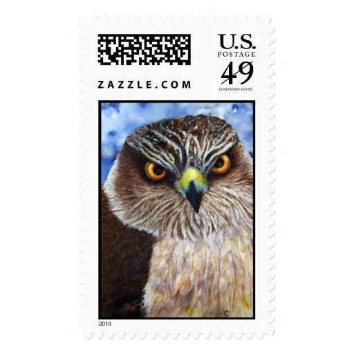 Hawkeyes Postage Stamp