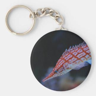 Hawkfish de pico largo rojo llavero redondo tipo pin