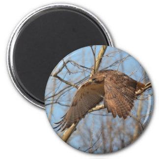 Hawks 2 Inch Round Magnet
