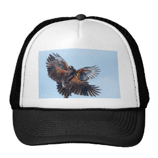 Hawks Fight for Control of the Sky Trucker Hat