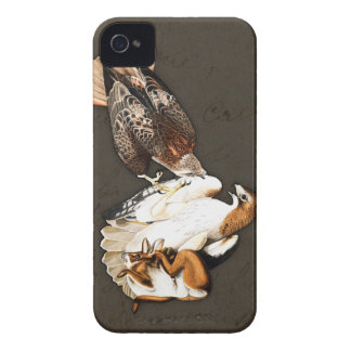 Hawks Hunt Vintage iPhone 4 Cover