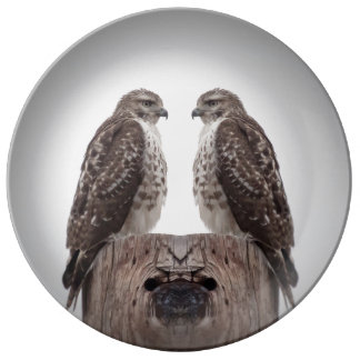 Hawks on a post plate
