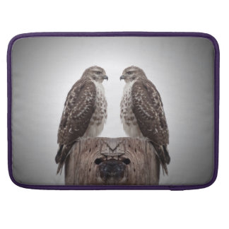 Hawks on a post sleeve for MacBook pro