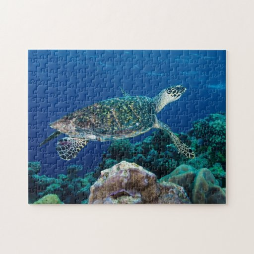 Hawksbill Sea Turtle Great Barrier Reef Coral Gift Puzzle